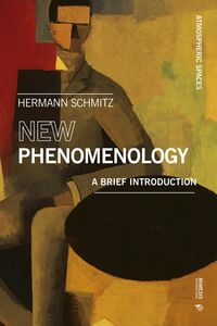New Phenomenology A Brief Introduction