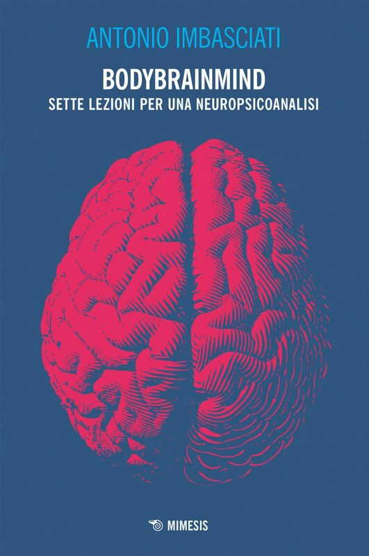 Bodybrainmind Sette lezioni per una neuropsicoanalisi