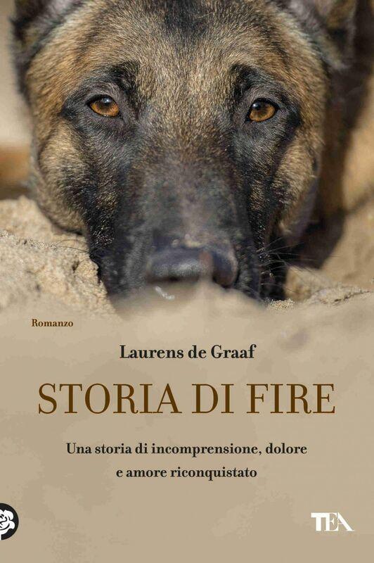 Storia di Fire Una storia di comprensione, dolore e amore riconquistato