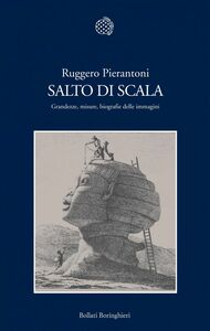 Salto di scala Grandezze, misure, biografie delle immagini