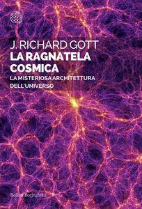 La ragnatela cosmica La misteriosa architettura dell'universo