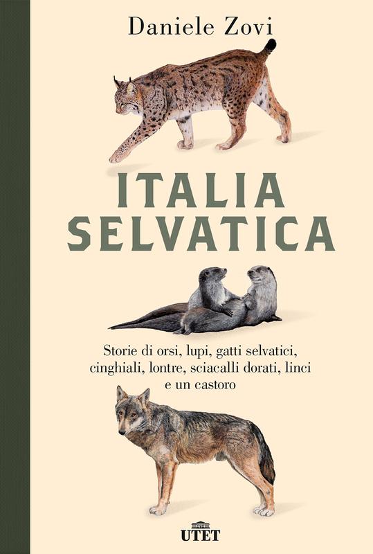 Italia selvatica Storie di orsi, lupi, gatti selvatici, cinghiali, lontre, sciacalli dorati, linci e un castoro