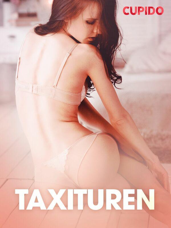 Taxituren - erotiske noveller