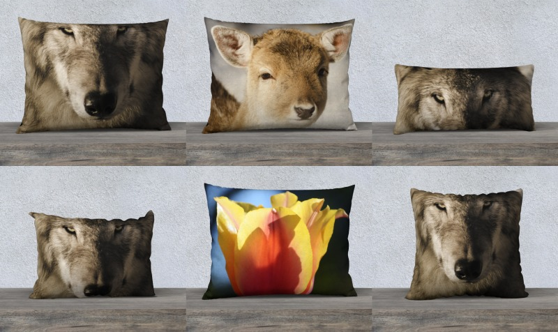 Pillow Collection preview