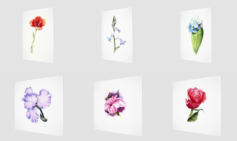 Watercolor Florals preview