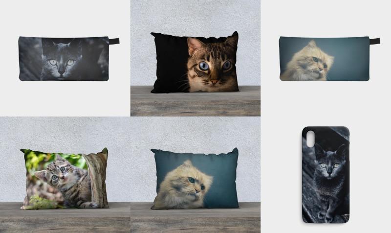 Aperçu de Kitty Komforts