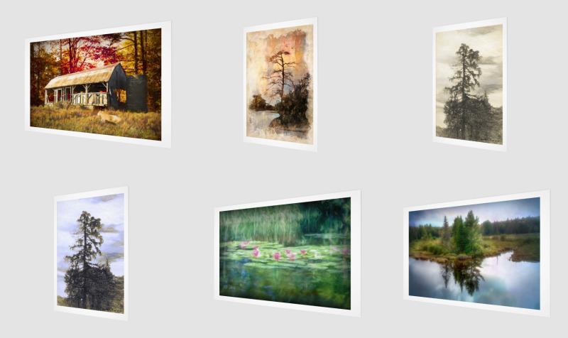Aperçu de Canvases and Prints