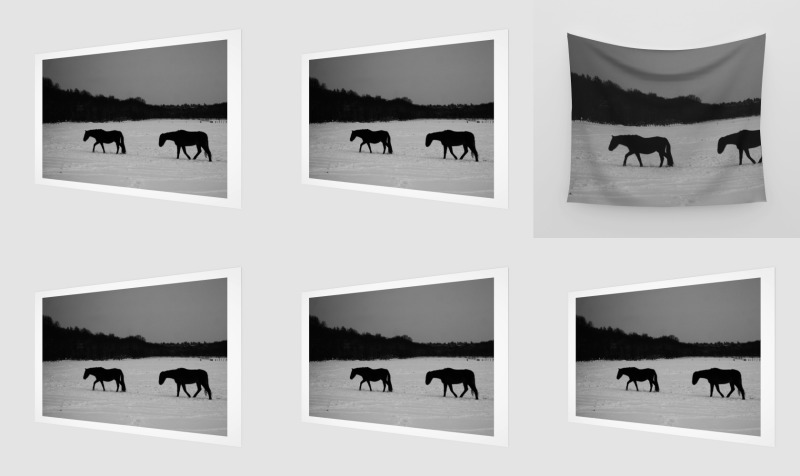 Horses On Snow preview
