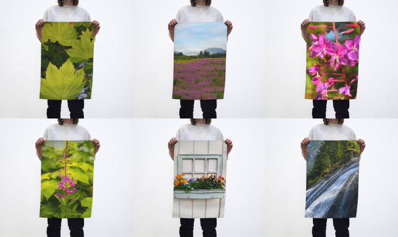 Cotton Tea Towels preview