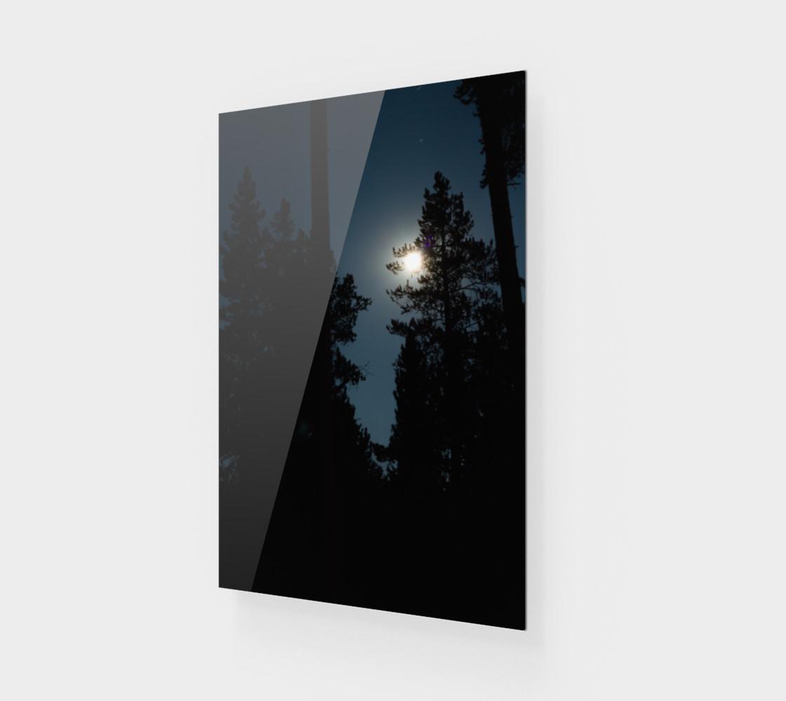 Moonlit Night preview #1