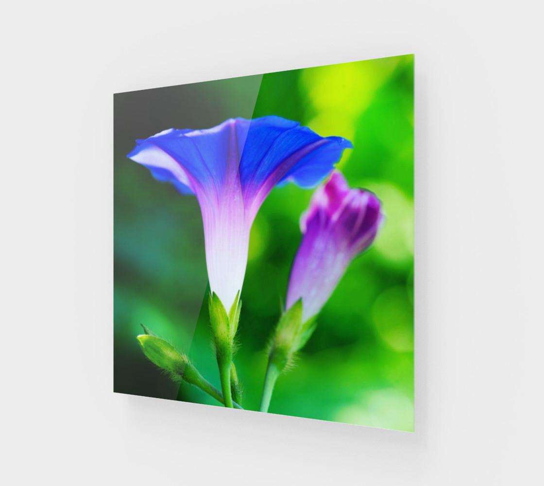 Aperçu de Trumpet Flower  #1