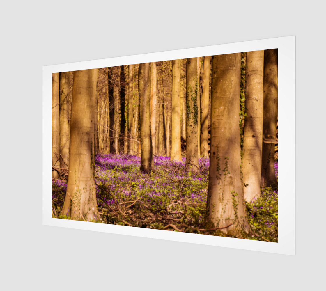 purple forest floor wall art preview #1