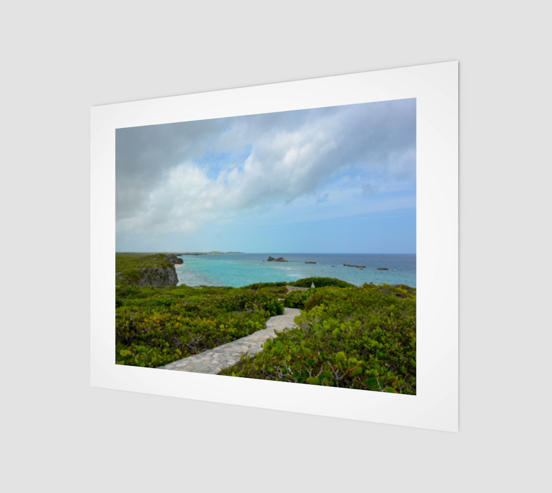Aperçu de Path to the Secret Beach at Mudjin Harbor on Middle Caicos Wall Art #1