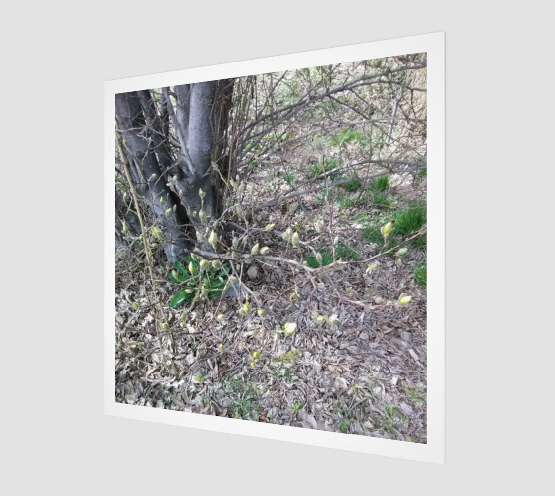 Darling Buds of March Wall Art preview #1