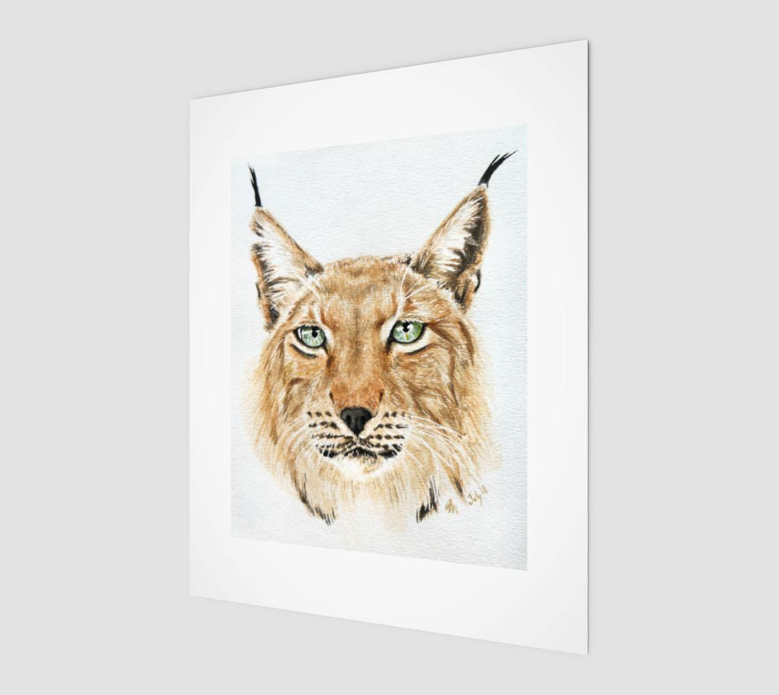 Apollo Siberian Lynx by Zrana preview #1
