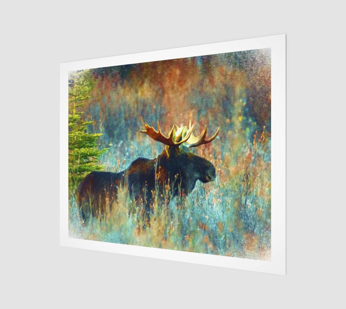Aperçu de moose canvas #1
