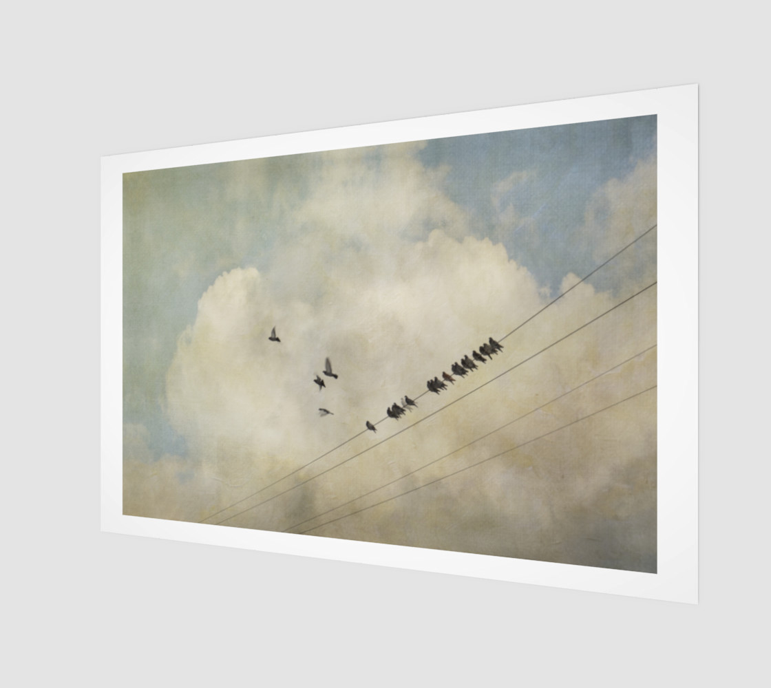 Birds on a Wire preview #1