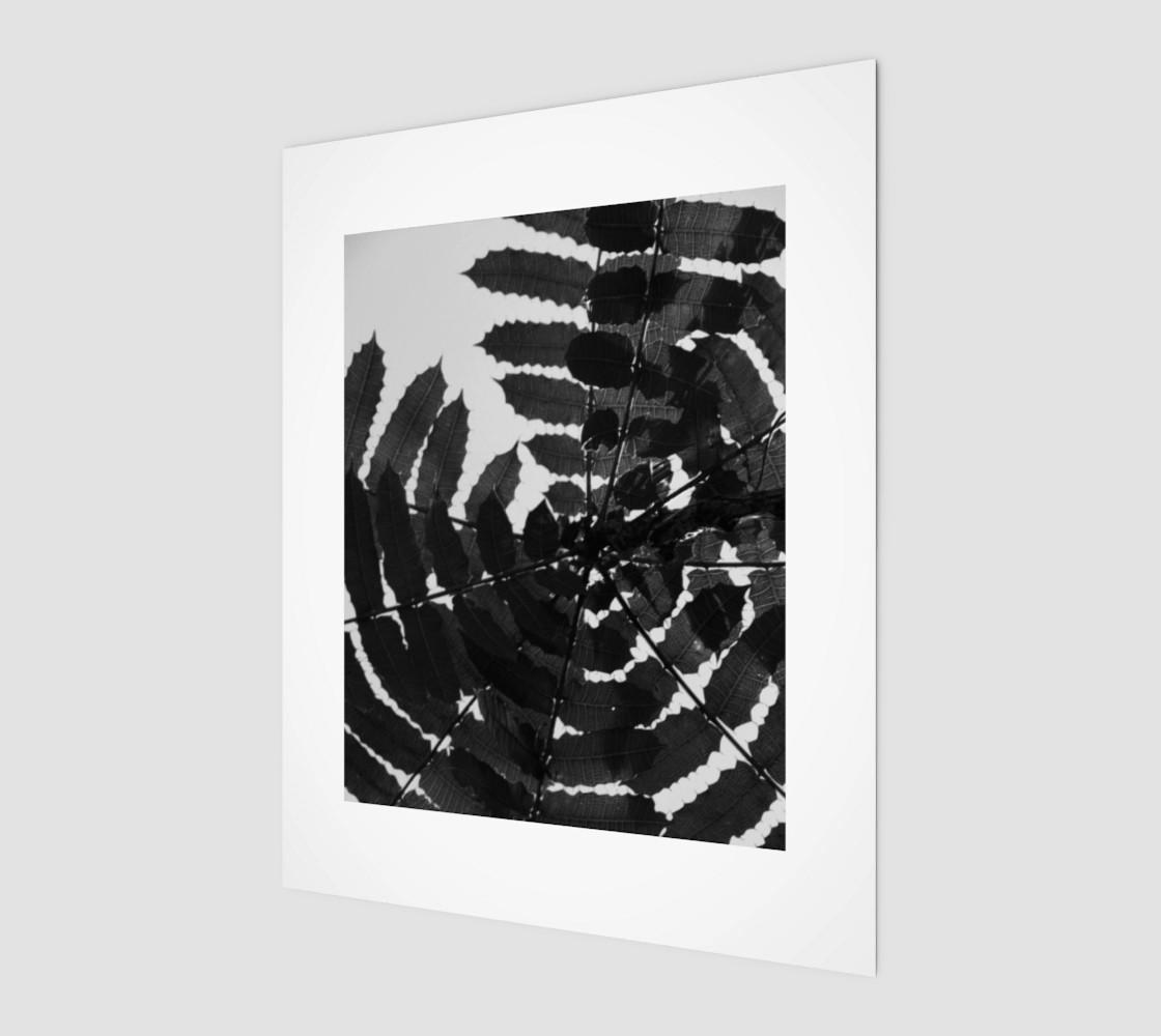 Aperçu de Black and White Leaf #1
