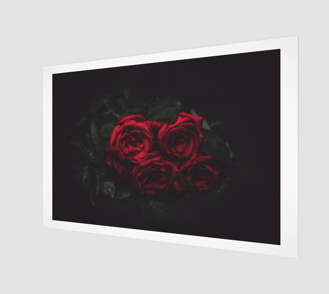 Aperçu de Roses #1