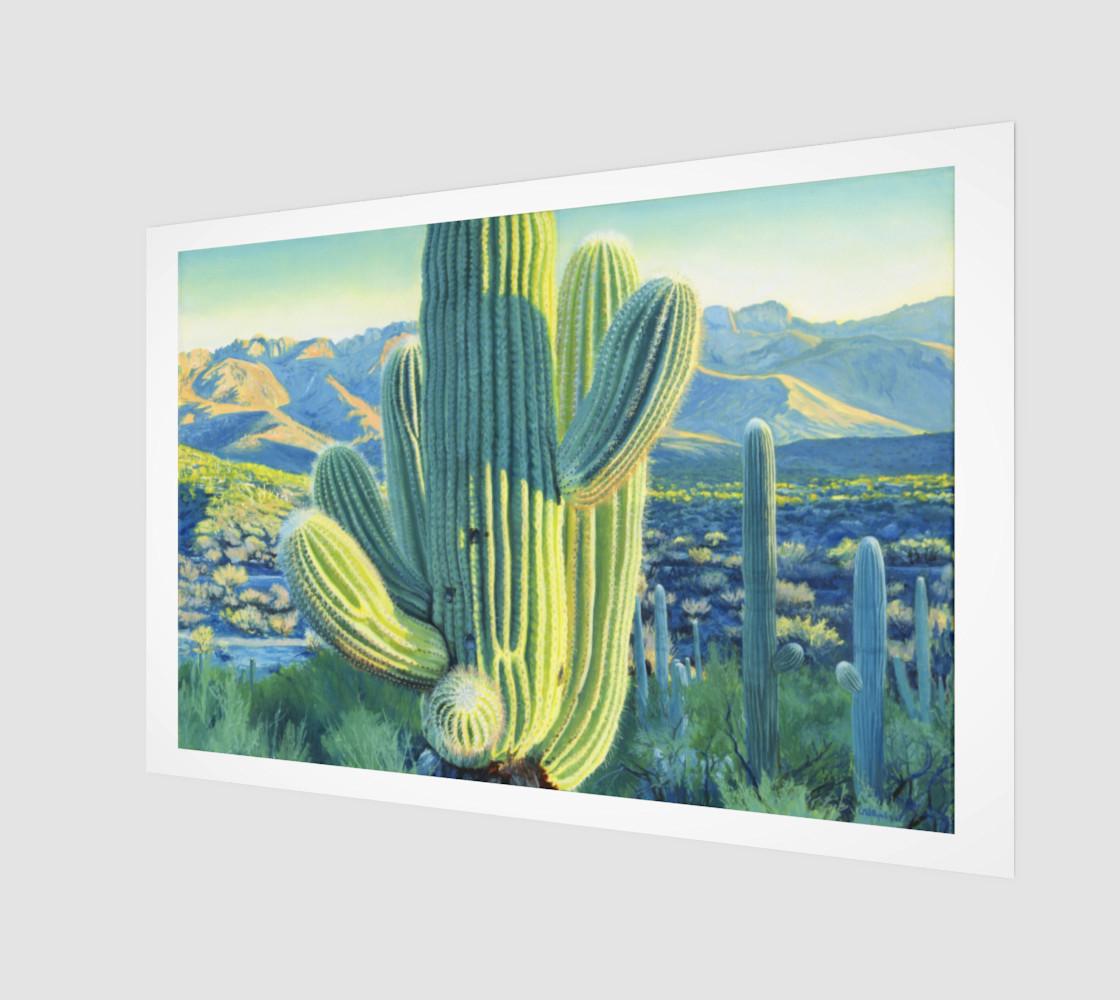 Saguaro 1 preview #1