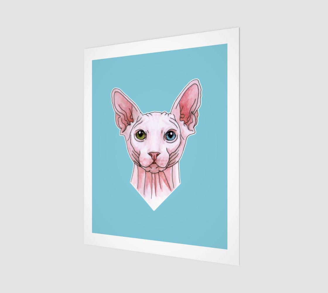 Sphynx cat portrait preview #1