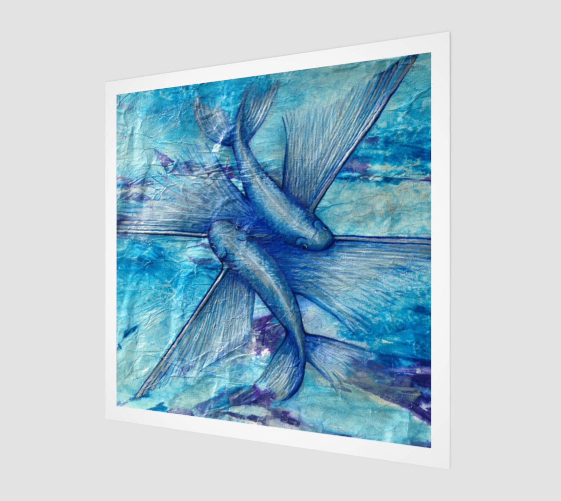 Catalina Flying Fish Art preview #1