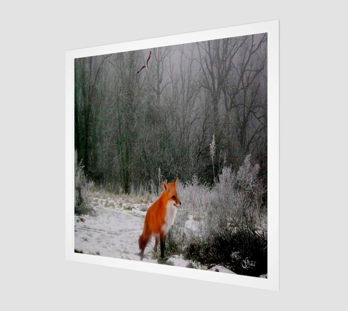 Aperçu de Winter Fox  #1