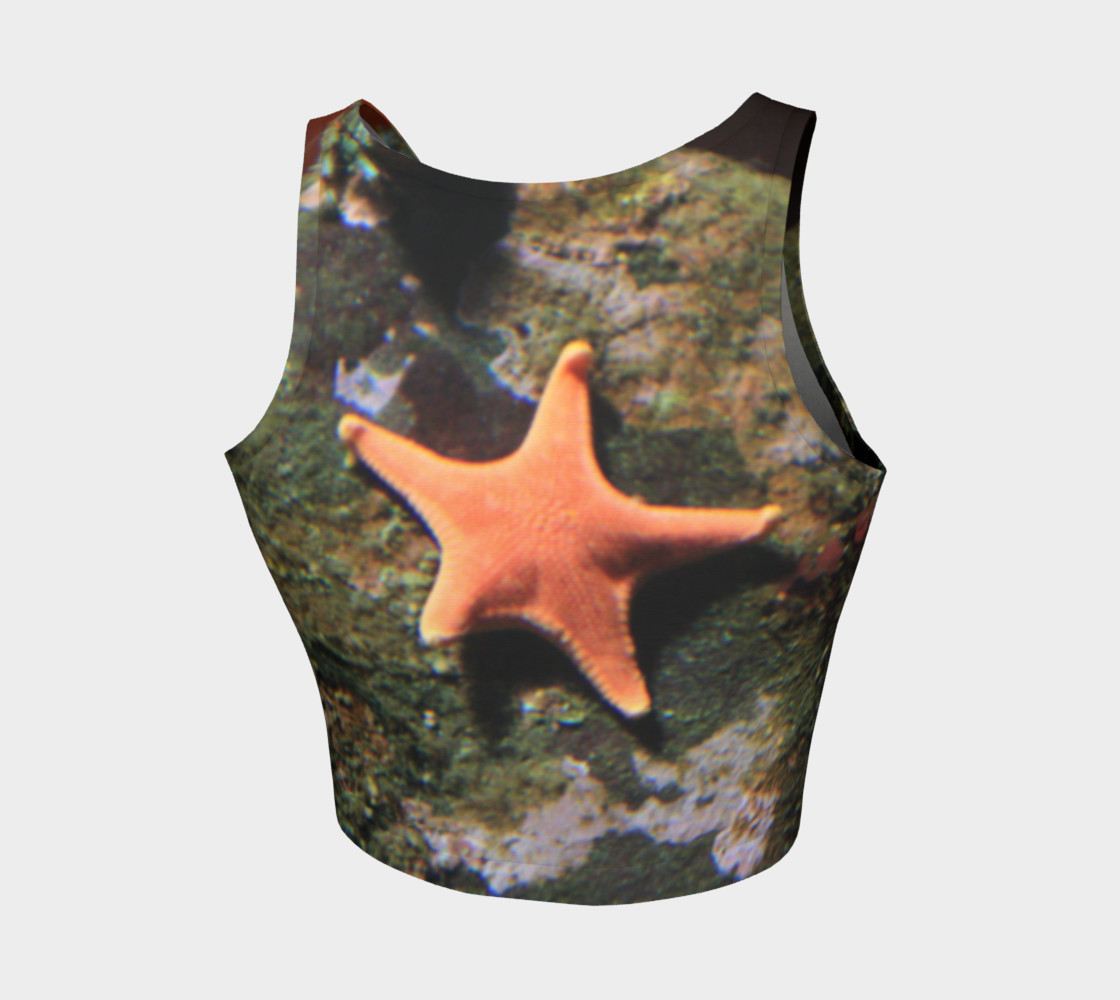 Starfish preview #2
