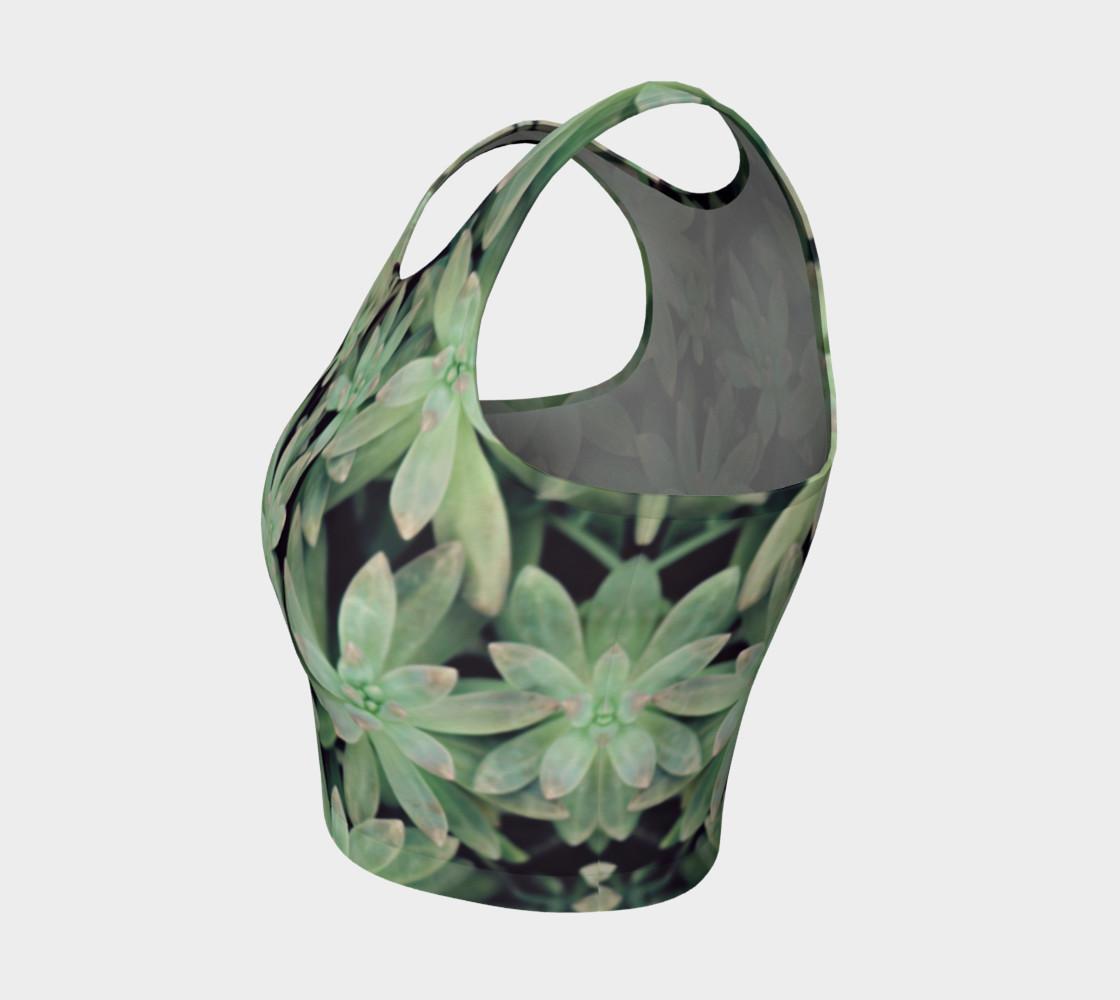 Aperçu de Succulent #3