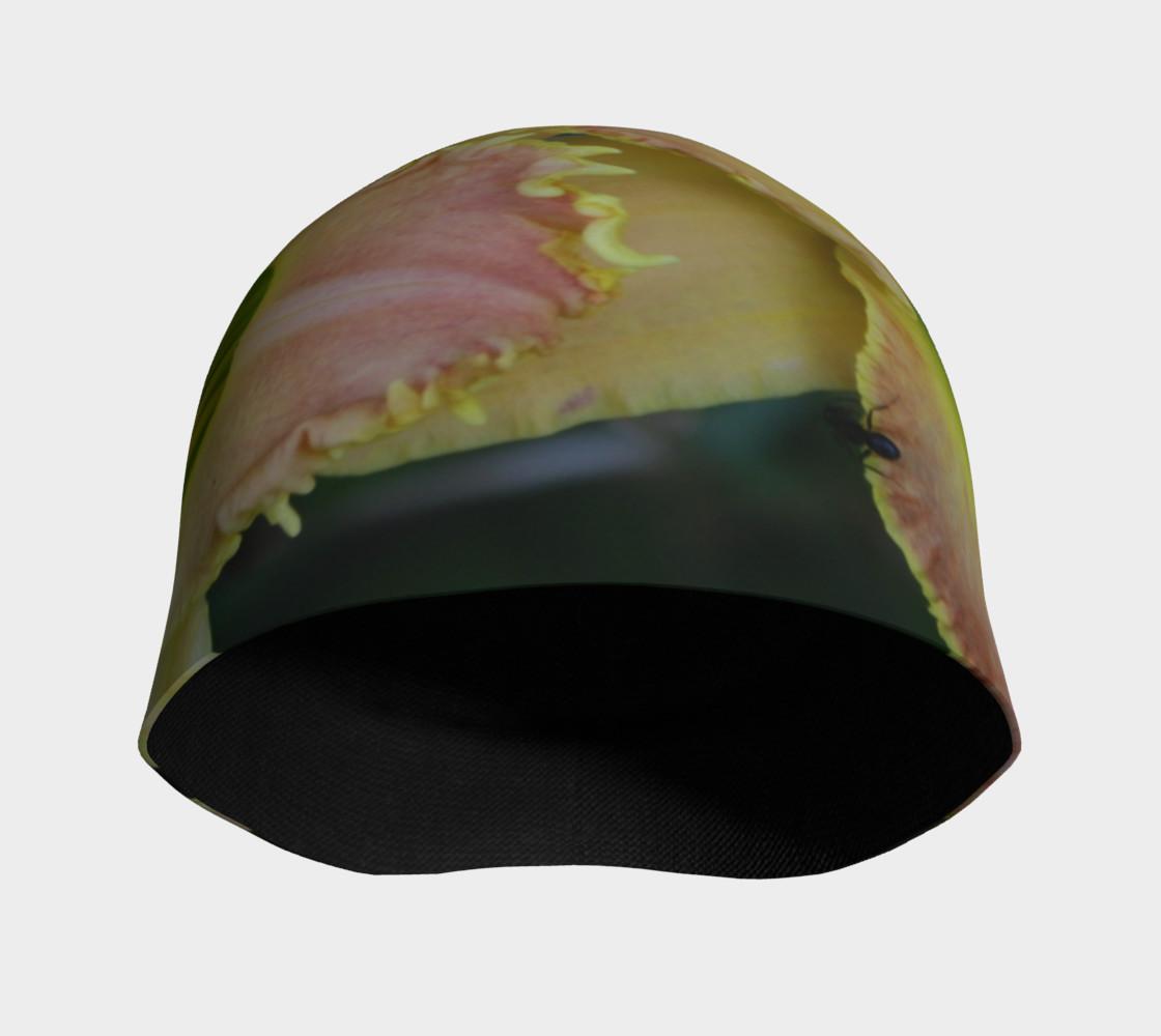 Aperçu de toothy cap #3