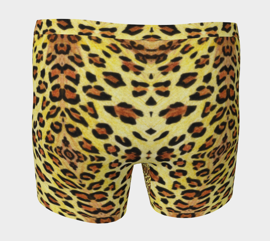 Leopard print Boxer Brief preview #4