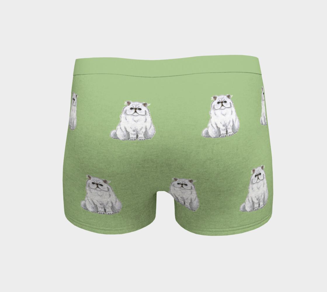 Persian cat pattern Boyshort preview #4