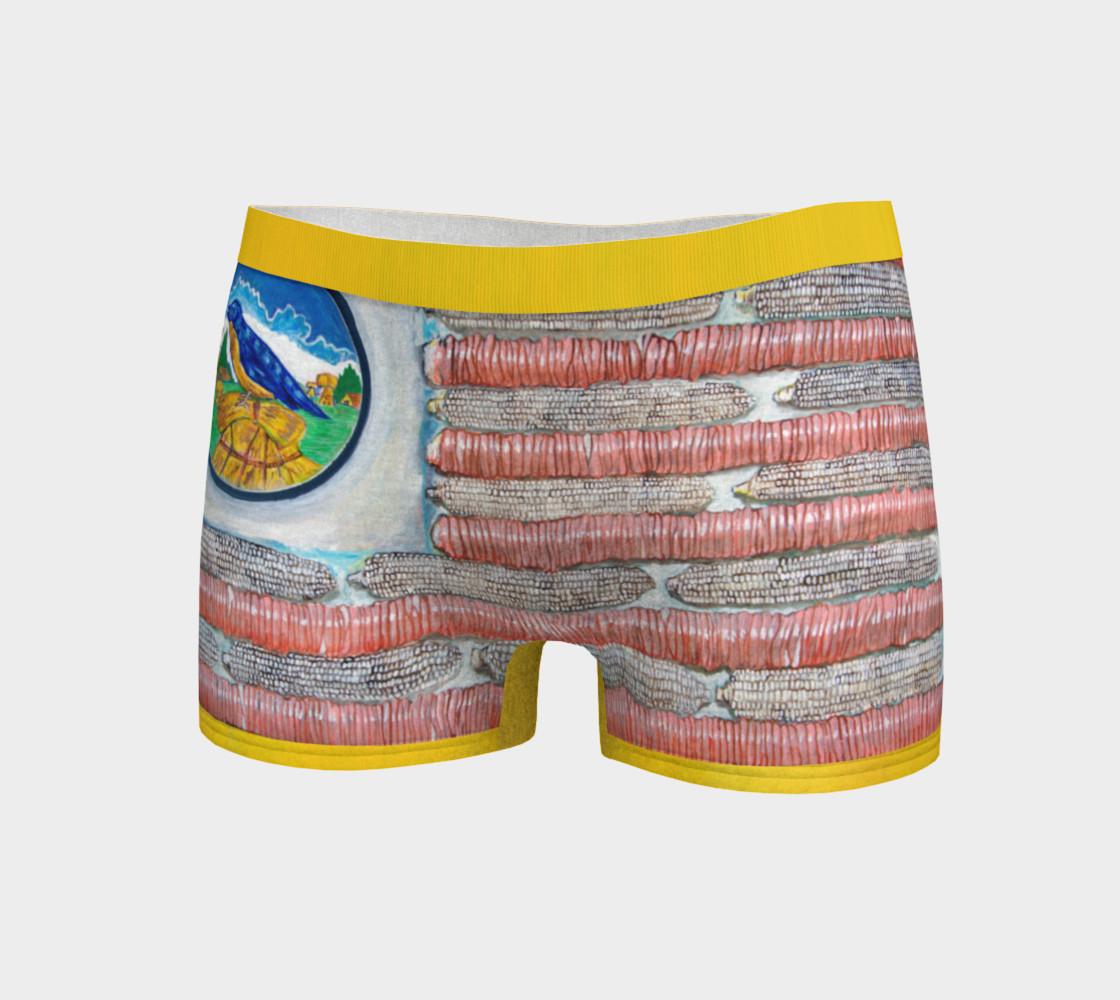 Aperçu de I Pledge Allegiance to the Achii Boy Shorts #3