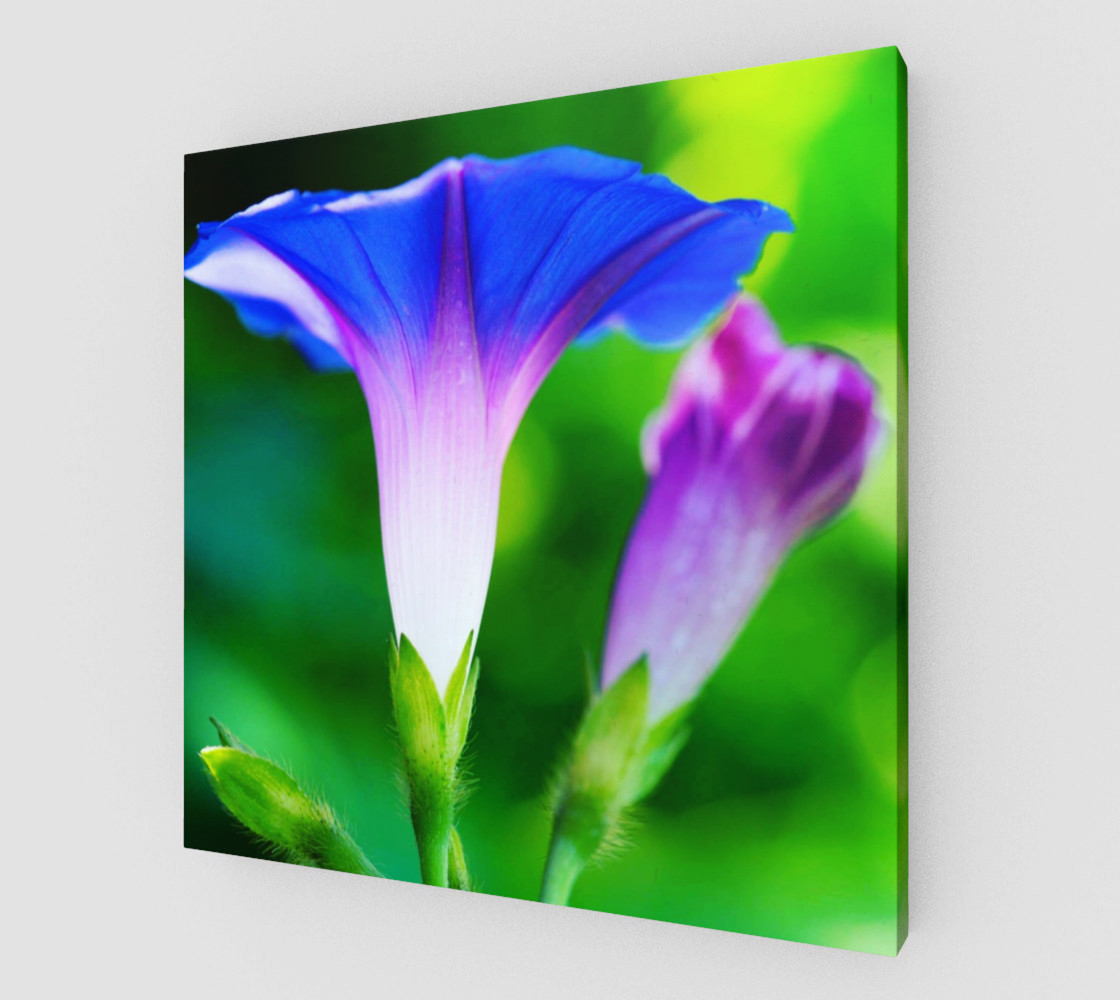 Trumpet Flower  preview #1