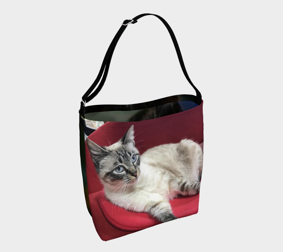 Aperçu de RCC CAT BAG 1 #1