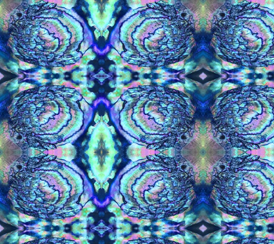 abalone 2 thumbnail #1