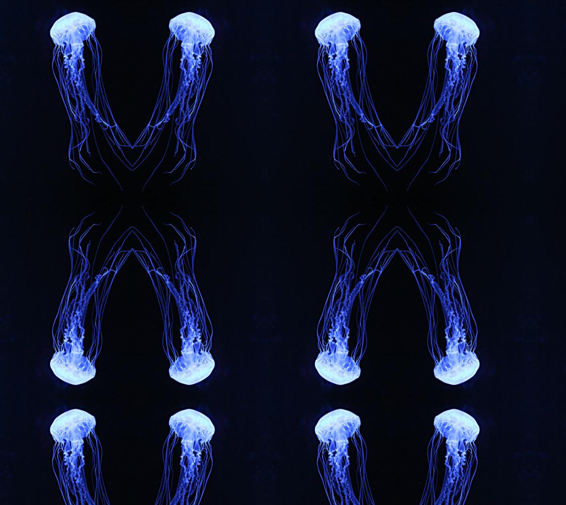 Jellyfish  thumbnail #1