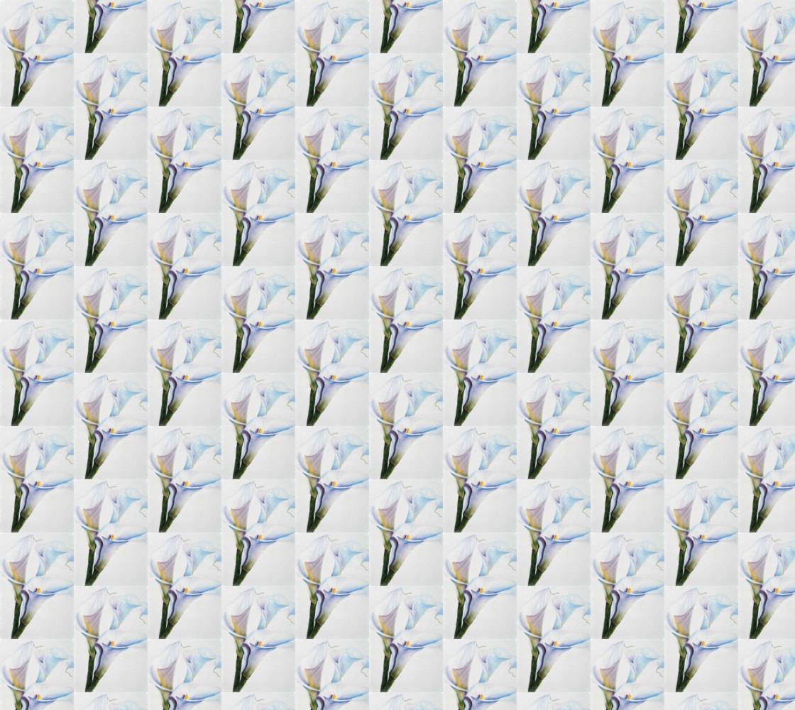 Calla Lilies thumbnail #1