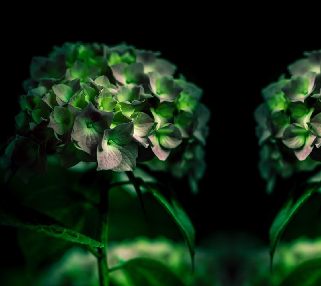 Fiore Verde Miniature #1