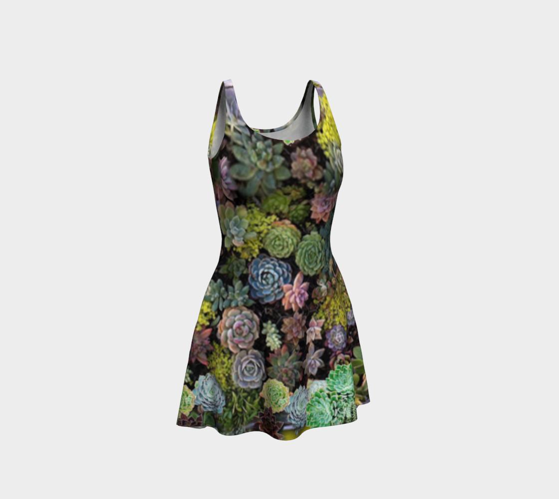 Succulents galore preview #1
