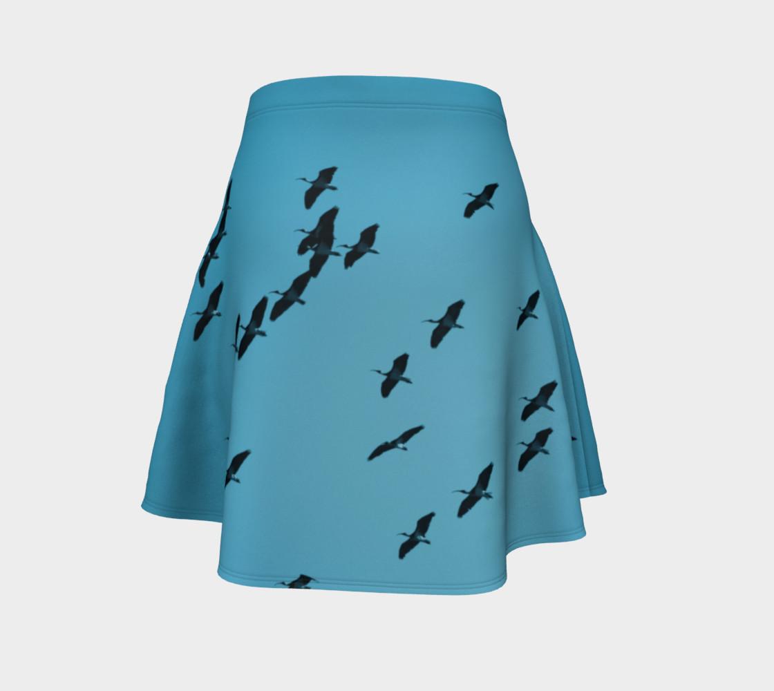 Aperçu de IbisSky Skirt Blue #4