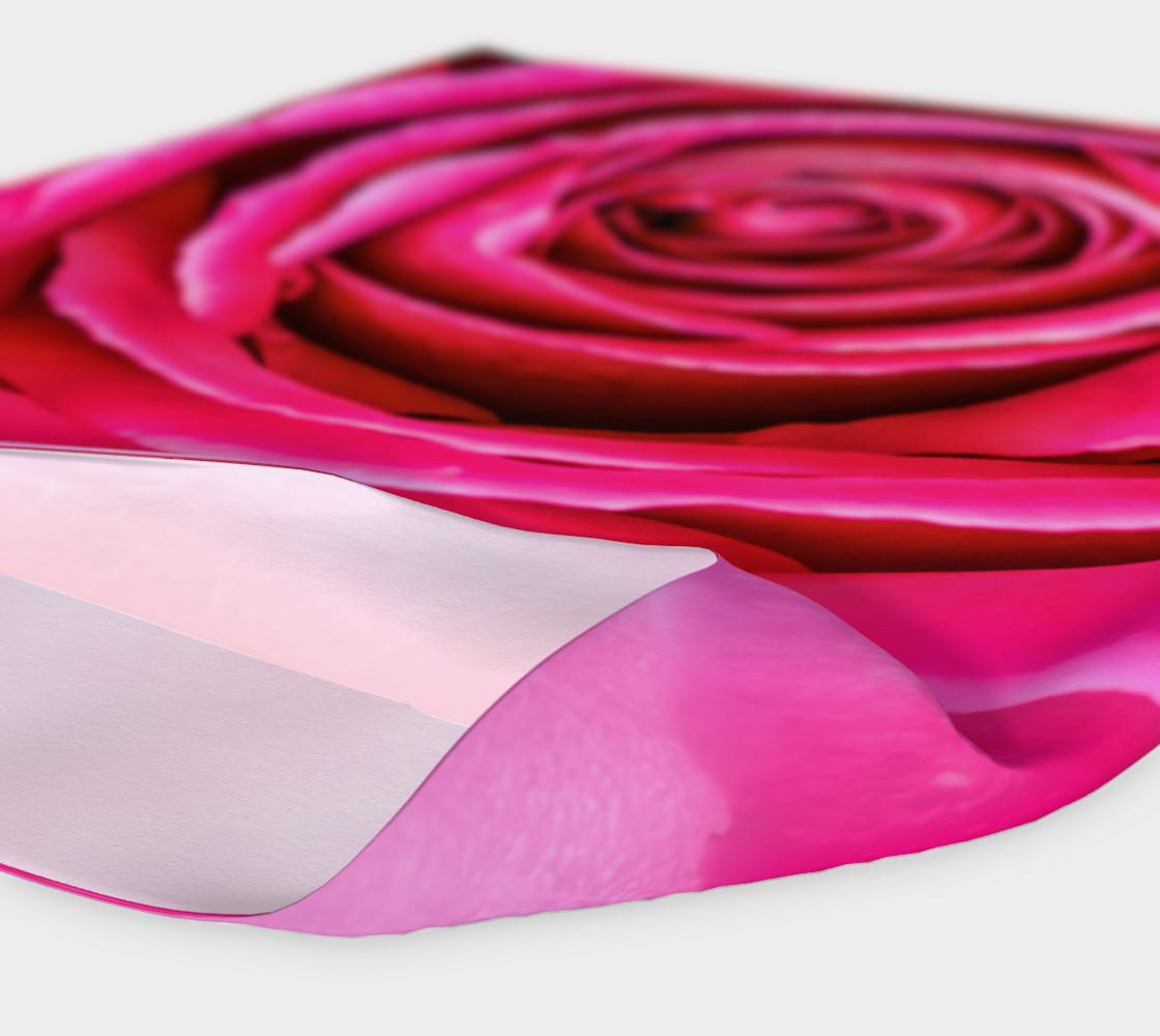 Aperçu de Hot Pink Rose Closeup #4
