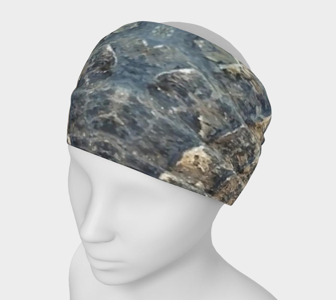Alligator Headband preview #1