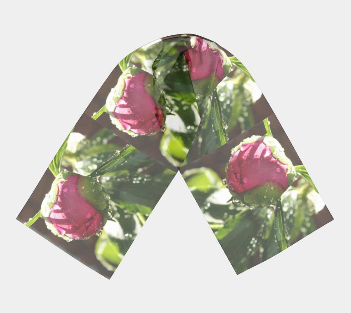 Aperçu de Pink Peonies with Droplets  #3