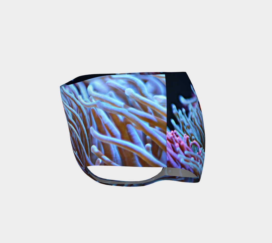 Clownfish Booty preview #3