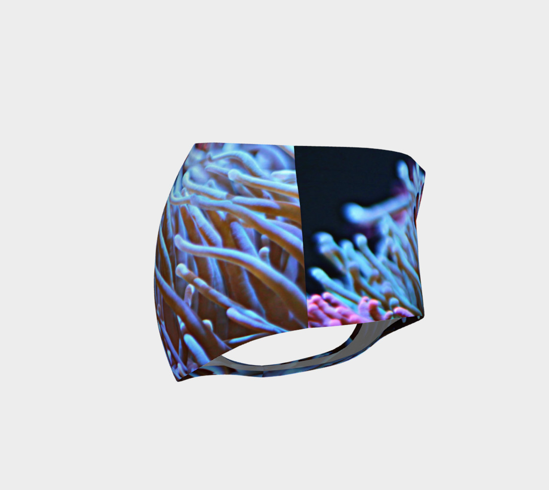 Clownfish Booty preview #4