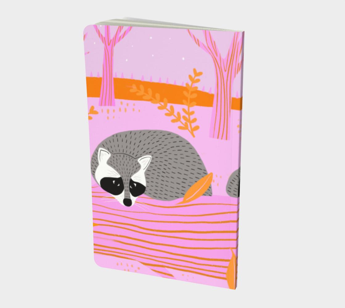 Spirit Animal - Raccoon preview #2