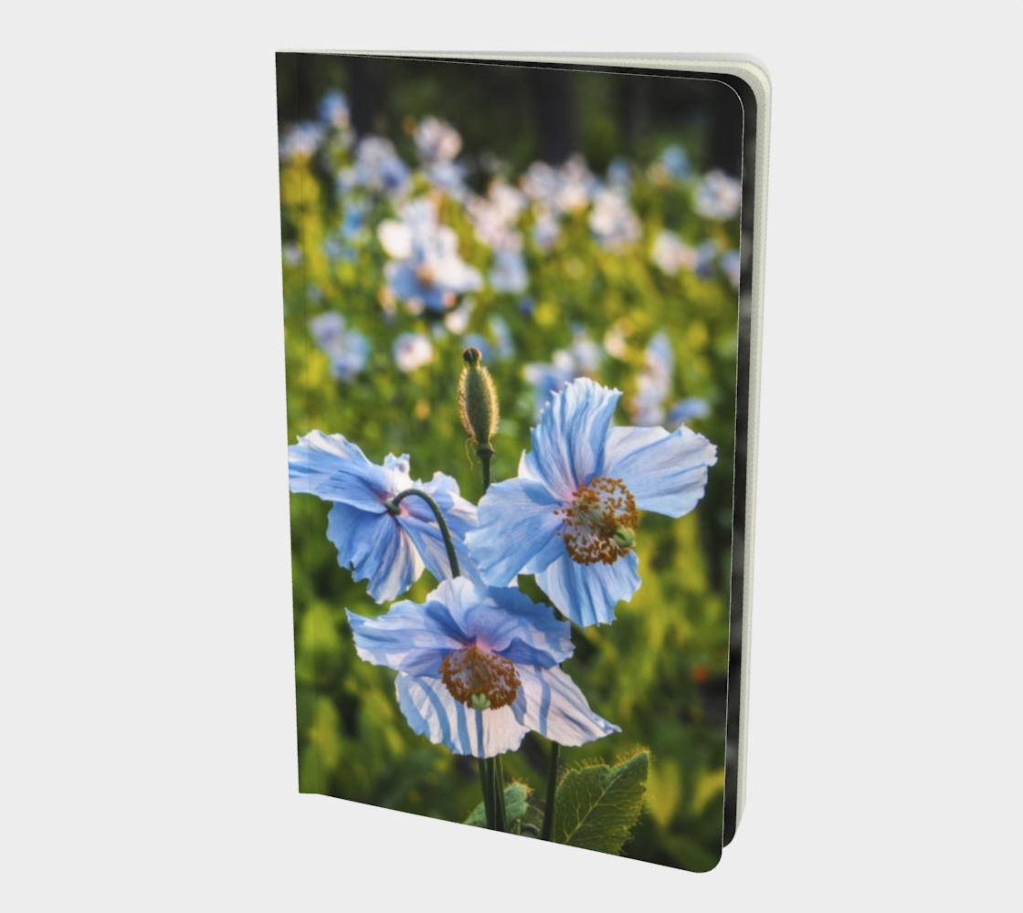 Aperçu de Pavots bleus - Blue Poppies #1