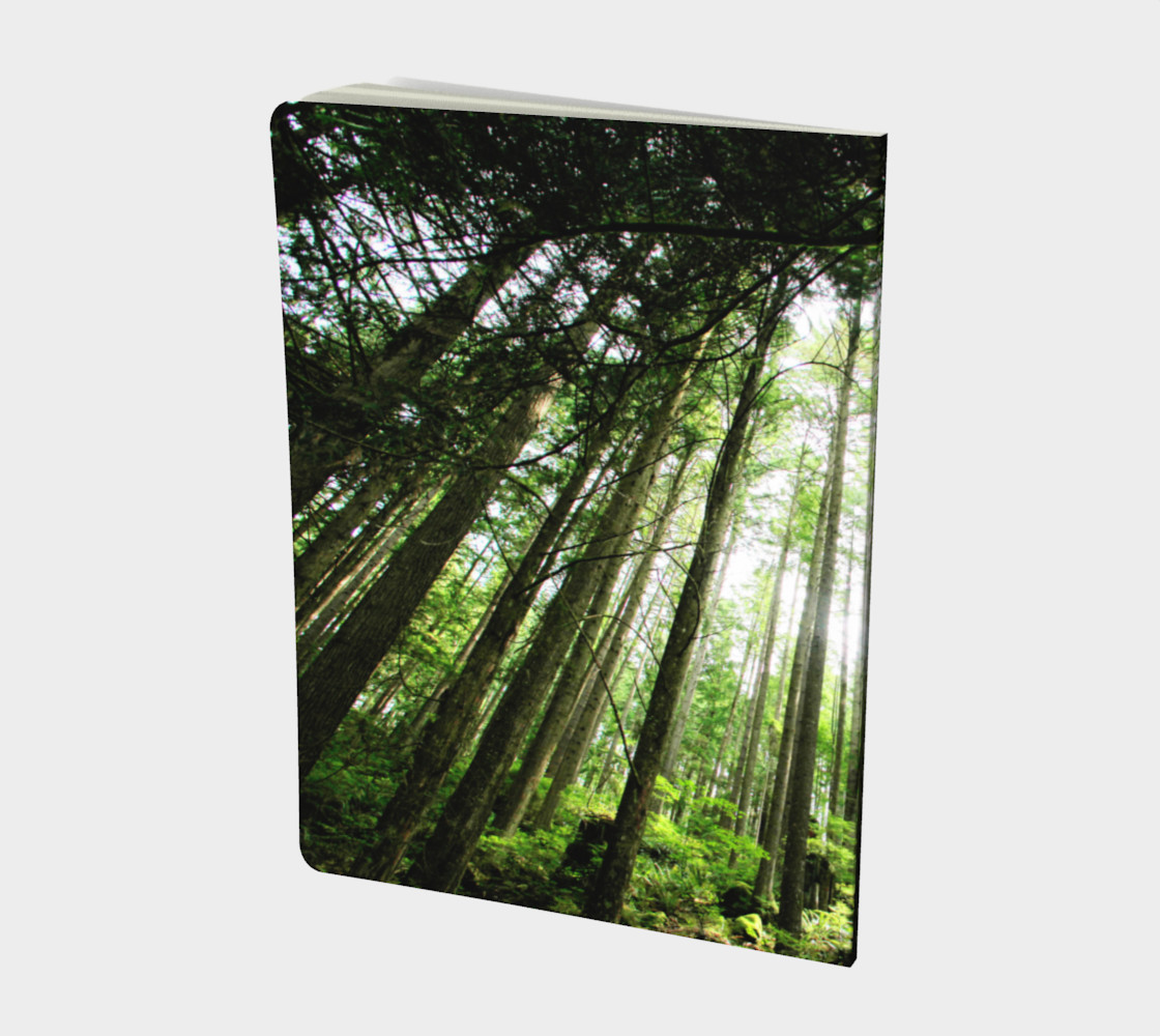 foret 2 lge notebook preview #2