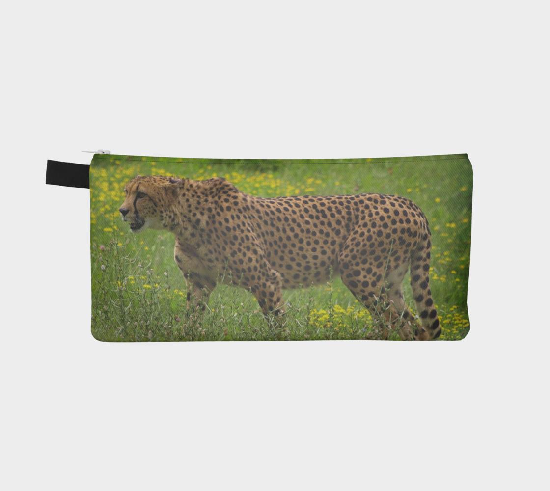 Cheetah preview #2